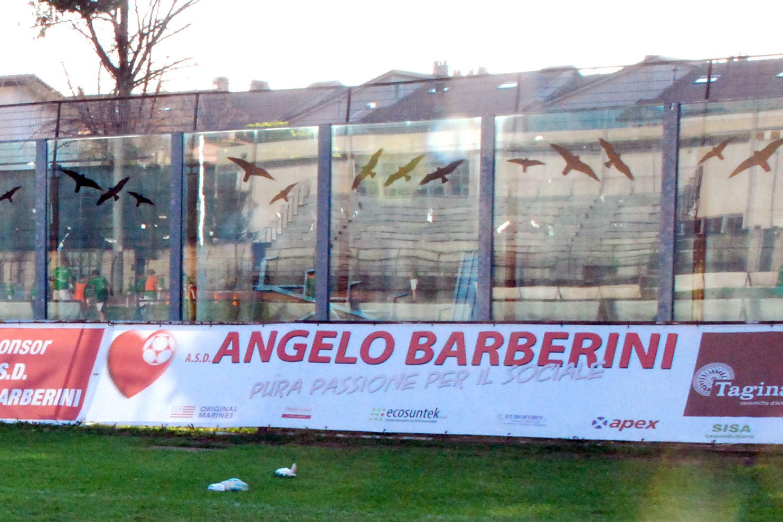 asd angelo barberini